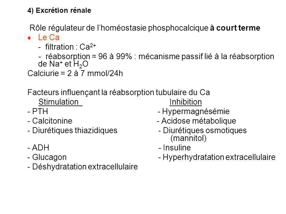 4) Excrétion rénale Rôle régulateur de l'homéostasie phosphocalcique à court terme  Le Ca - filtration : Ca 2+ - réabsorption = 96 à 99% : mécanisme passif lié à la réabsorption de Na + et H 2 O Calciurie = 2 à 7 mmol/24h Facteurs influençant la réabsorption tubulaire du Ca Stimulation Inhibition - PTH - Hypermagnésémie - Calcitonine - Acidose métabolique - Diurétiques thiazidiques - Diurétiques osmotiques (mannitol) - ADH - Insuline - Glucagon - Hyperhydratation extracellulaire - Déshydratation extracellulaire