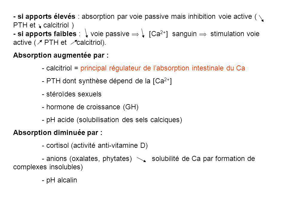 - si apports élevés : absorption par voie passive mais inhibition voie active ( PTH et calcitriol ) - si apports faibles : voie passive   Ca 2+  sanguin  stimulation voie active ( PTH et calcitriol).