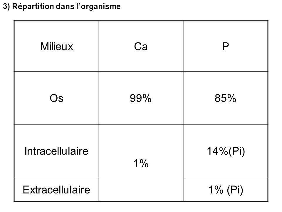 MilieuxCaP Os99%85% Intracellulaire 1% 14%(Pi) Extracellulaire1% (Pi) 3) Répartition dans l'organisme