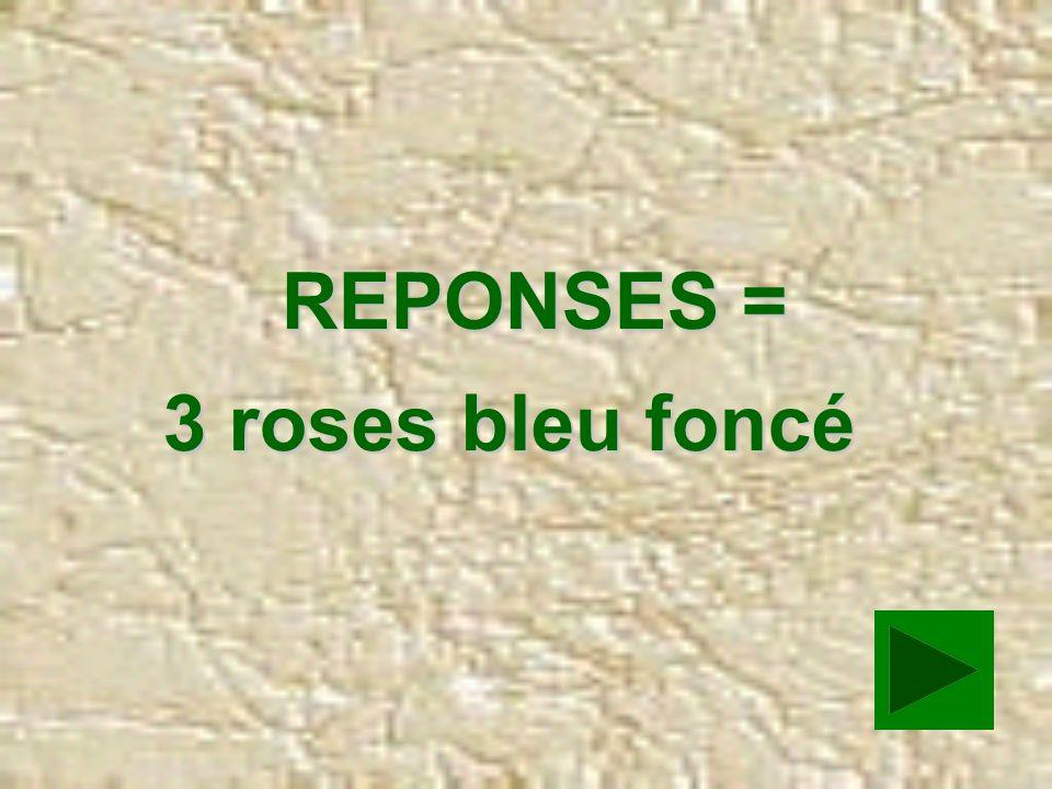 COMBIEN IL AVAIT DE ROSES BLEU FONCE