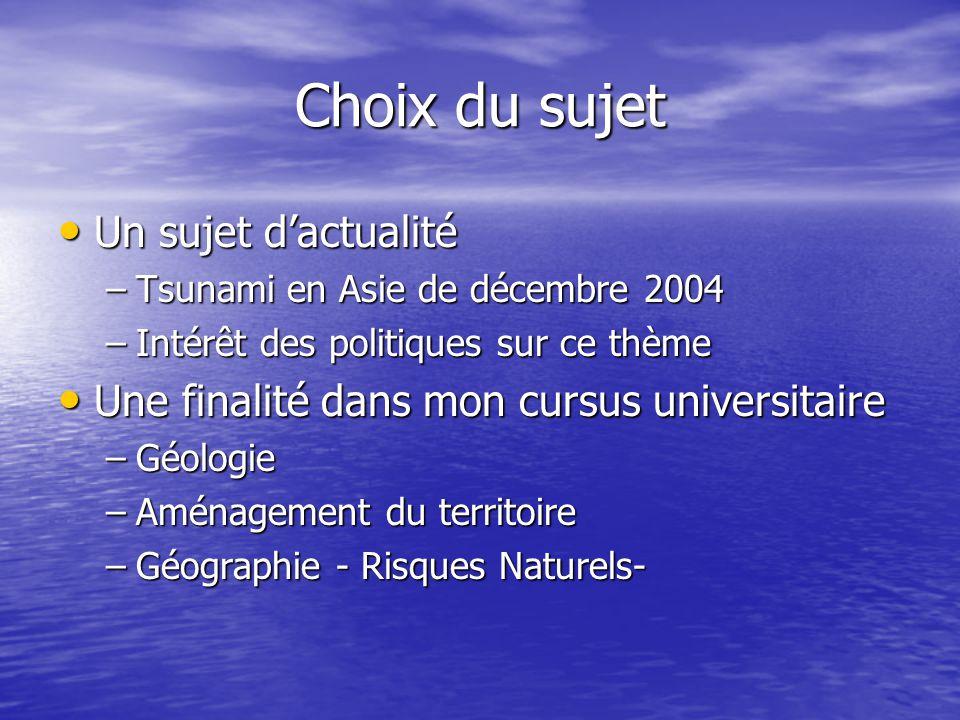 Choix du sujet Un sujet d'actualité Un sujet d'actualité –Tsunami en Asie de décembre 2004 –Intérêt des politiques sur ce thème Une finalité dans mon