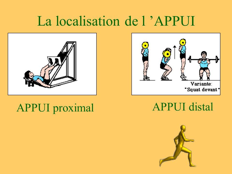 La localisation de l 'APPUI APPUI proximal APPUI distal