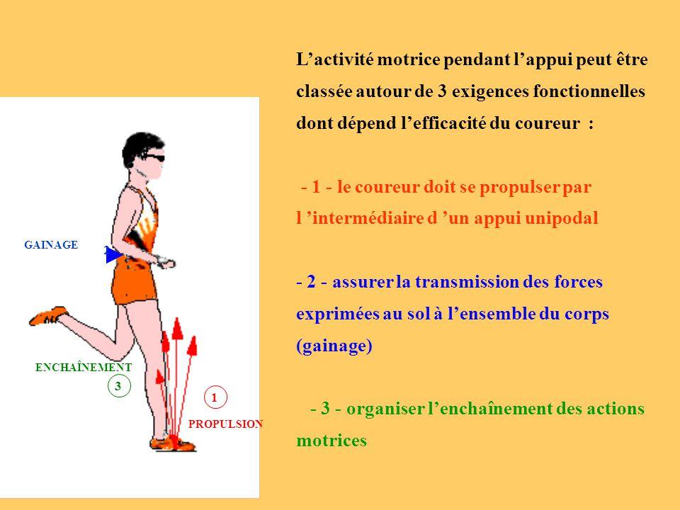 GAINAGE 1 PROPULSION 3 ENCHAÎNEMENT 2 L'activité motrice pendant l'appui peut être classée autour de 3 exigences fonctionnelles dont dépend l'efficaci
