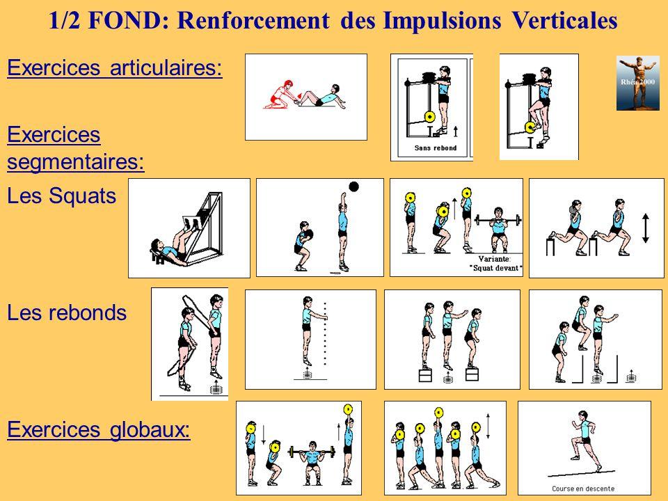 1/2 FOND: Renforcement des Impulsions Verticales Exercices articulaires: Exercices segmentaires: Les Squats Les rebonds Exercices globaux: