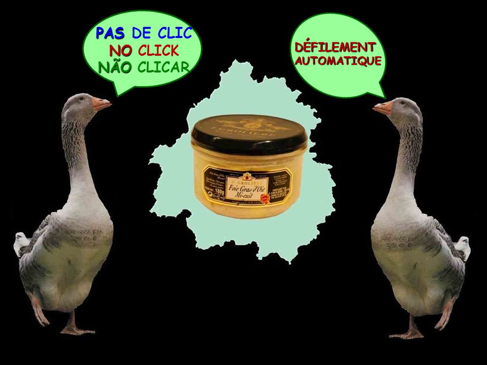 PAS PAS DE CLIC NO NO CLICK NÃO NÃO CLICAR DÉFILEMENTAUTOMATIQUE