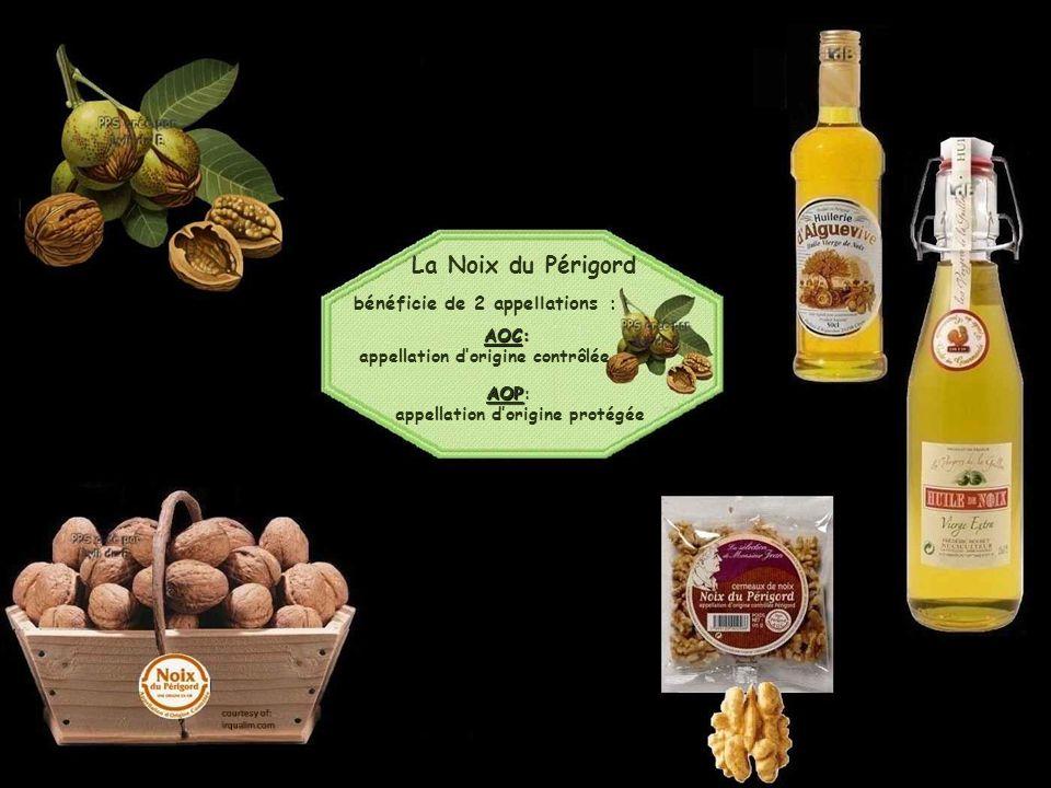 La Noix du Périgord bénéficie de 2 appellations : AOC: AOC: appellation d'origine contrôlée AOP AOP: appellation d'origine protégée courtesy of: irqualim.com