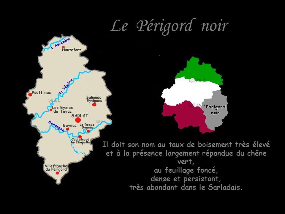 Le Périgord noir Il doit son nom au taux de boisement très élevé et à la présence largement répandue du chêne vert, au feuillage foncé, dense et persistant, très abondant dans le Sarladais.