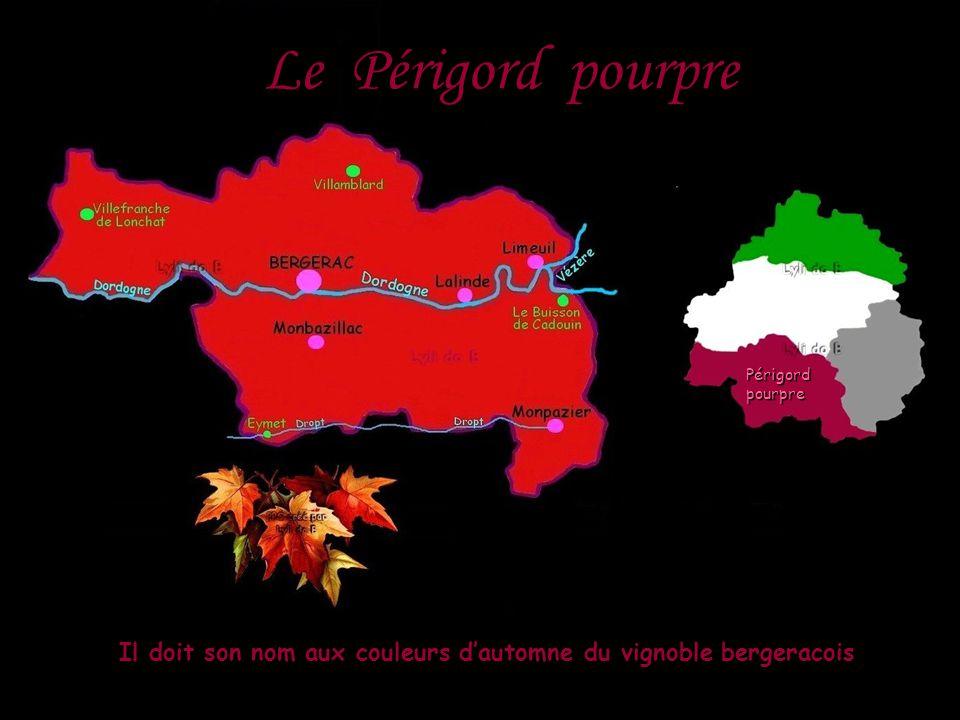 Le Périgord pourpre Il doit son nom aux couleurs d'automne du vignoble bergeracois Périgordpourpre