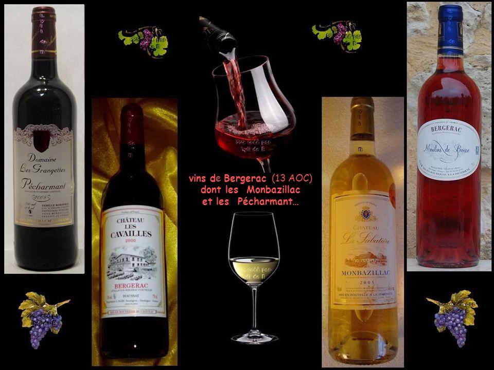 vins de Bergerac (13 AOC) dont les Monbazillac et les Pécharmant…