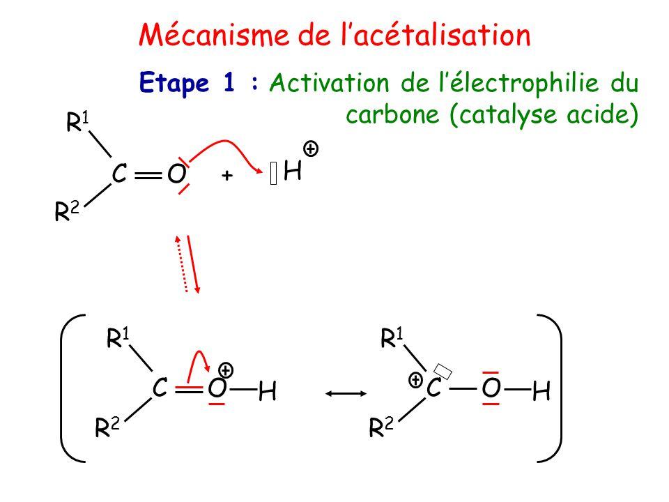 Mécanisme de l'acétalisation + H O C R1R1 R2R2 O C H R1R1 R2R2 O C H R1R1 R2R2 Etape 1 : Activation de l'électrophilie du carbone (catalyse acide)