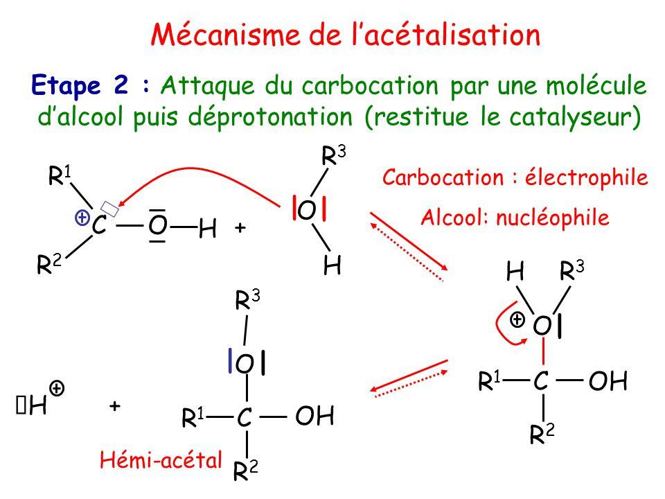 OH R3R3 H | C O R2R2 R1R1 H R3R3 | C O R2R2 R1R1 | + Mécanisme de l'acétalisation Etape 2 : Attaque du carbocation par une molécule d'alcool puis déprotonation (restitue le catalyseur) Carbocation : électrophile Alcool: nucléophile O C H + R1R1 R2R2 H O R3R3 | | Hémi-acétal