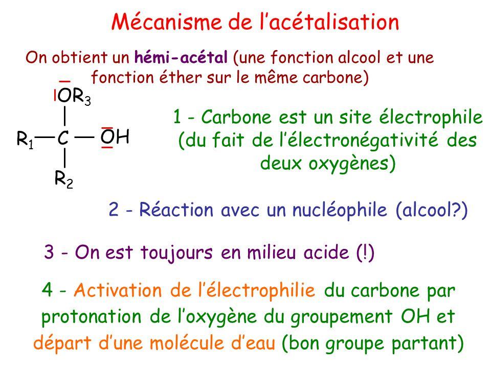 Mécanisme de l'acétalisation On obtient un hémi-acétal (une fonction alcool et une fonction éther sur le même carbone) 1 - Carbone est un site électrophile (du fait de l'électronégativité des deux oxygènes) OH C R2R2 R1R1 OR 3 3 - On est toujours en milieu acide (!) 2 - Réaction avec un nucléophile (alcool?) 4 - Activation de l'électrophilie du carbone par protonation de l'oxygène du groupement OH et départ d'une molécule d'eau (bon groupe partant)