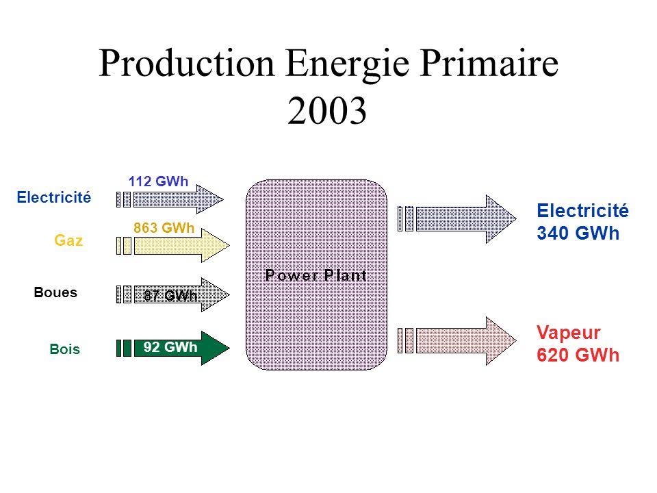 Production Energie Primaire 2003 Gaz Boues Bois 112 GWh 863 GWh 87 GWh 92 GWh Electricité 340GWh Vapeur 620GWh Electricité