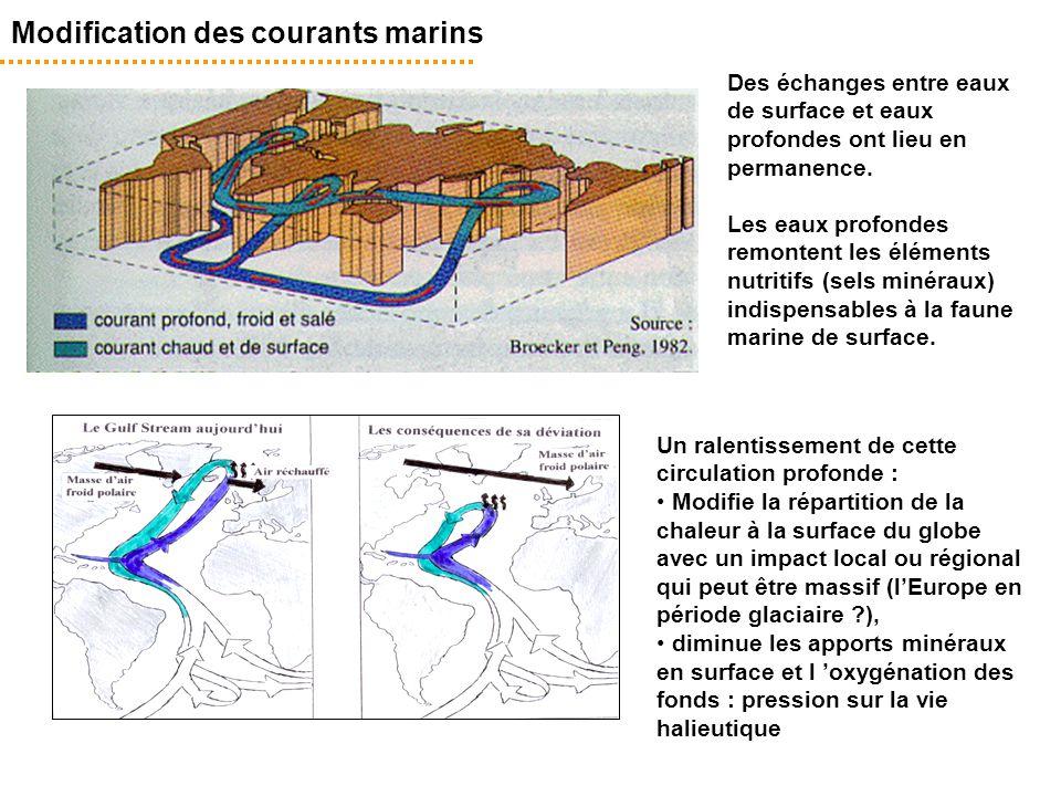 Des échanges entre eaux de surface et eaux profondes ont lieu en permanence. Les eaux profondes remontent les éléments nutritifs (sels minéraux) indis