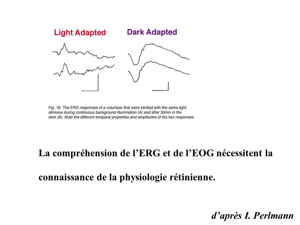 d'après I. Perlmann La compréhension de l'ERG et de l'EOG nécessitent la connaissance de la physiologie rétinienne.