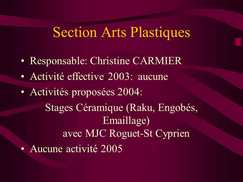 Section Arts Plastiques Responsable: Christine CARMIER Activité effective 2003: aucune Activités proposées 2004: Stages Céramique (Raku, Engobés, Emaillage) avec MJC Roguet-St Cyprien Aucune activité 2005