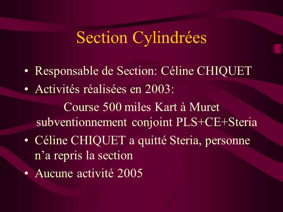 Section Cylindrées Responsable de Section: Céline CHIQUET Activités réalisées en 2003: Course 500 miles Kart à Muret subventionnement conjoint PLS+CE+Steria Céline CHIQUET a quitté Steria, personne n'a repris la section Aucune activité 2005