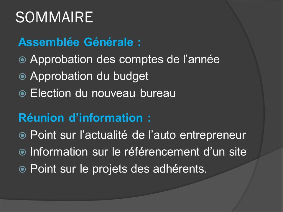 SOMMAIRE Assemblée Générale :  Approbation des comptes de l'année  Approbation du budget  Election du nouveau bureau Réunion d'information :  Poin