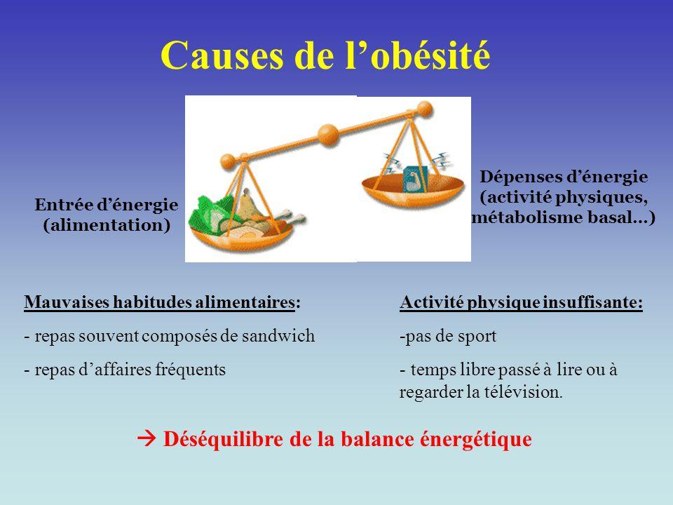 Causes de l'obésité Dépenses d'énergie (activité physiques, métabolisme basal…) Entrée d'énergie (alimentation)  Déséquilibre de la balance énergétiq