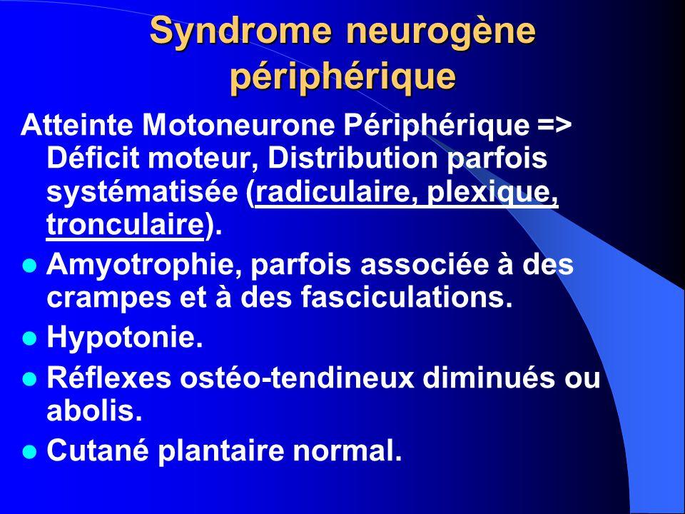 Syndrome neurogène périphérique Atteinte Motoneurone Périphérique => Déficit moteur, Distribution parfois systématisée (radiculaire, plexique, troncul