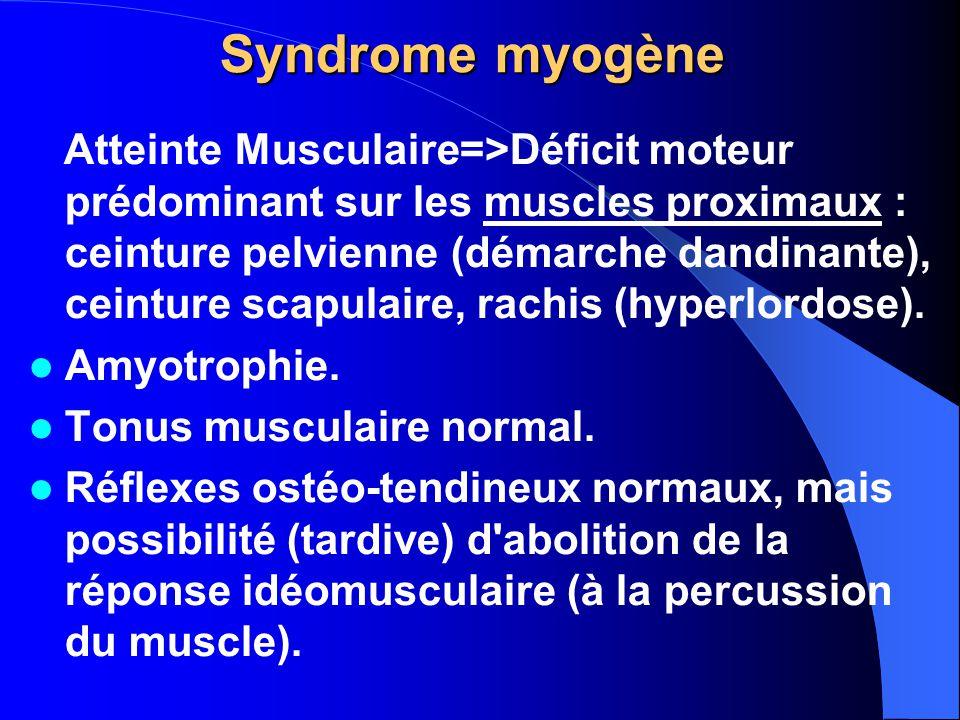 Syndrome myogène Atteinte Musculaire=>Déficit moteur prédominant sur les muscles proximaux : ceinture pelvienne (démarche dandinante), ceinture scapul