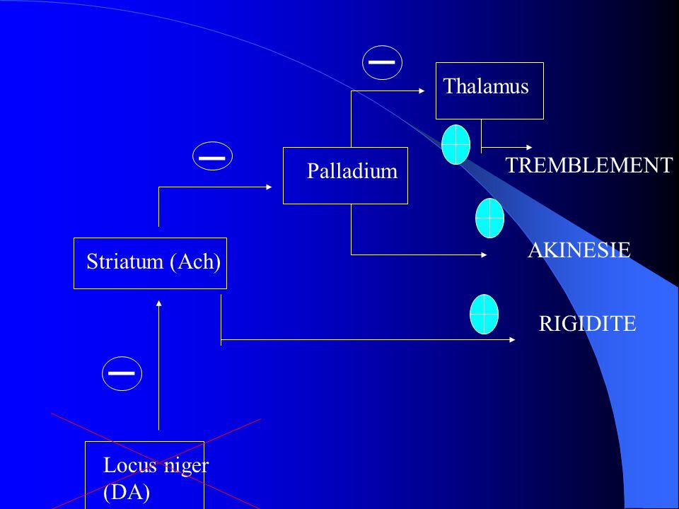 Locus niger (DA) Striatum (Ach) RIGIDITE _ Palladium _ AKINESIE Thalamus _ TREMBLEMENT