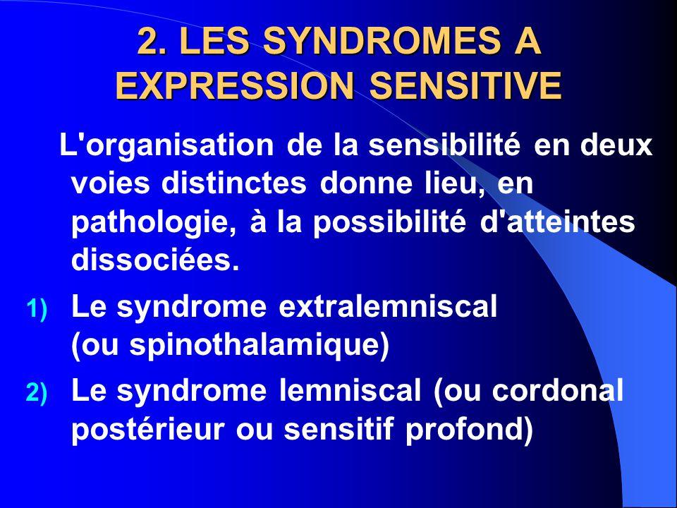 2. LES SYNDROMES A EXPRESSION SENSITIVE L'organisation de la sensibilité en deux voies distinctes donne lieu, en pathologie, à la possibilité d'attein
