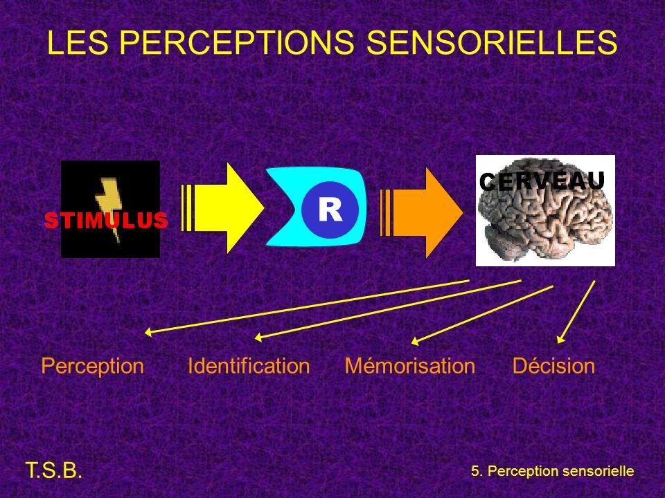 T.S.B. 5. Perception sensorielle LES PERCEPTIONS SENSORIELLES PerceptionIdentificationMémorisationDécision R