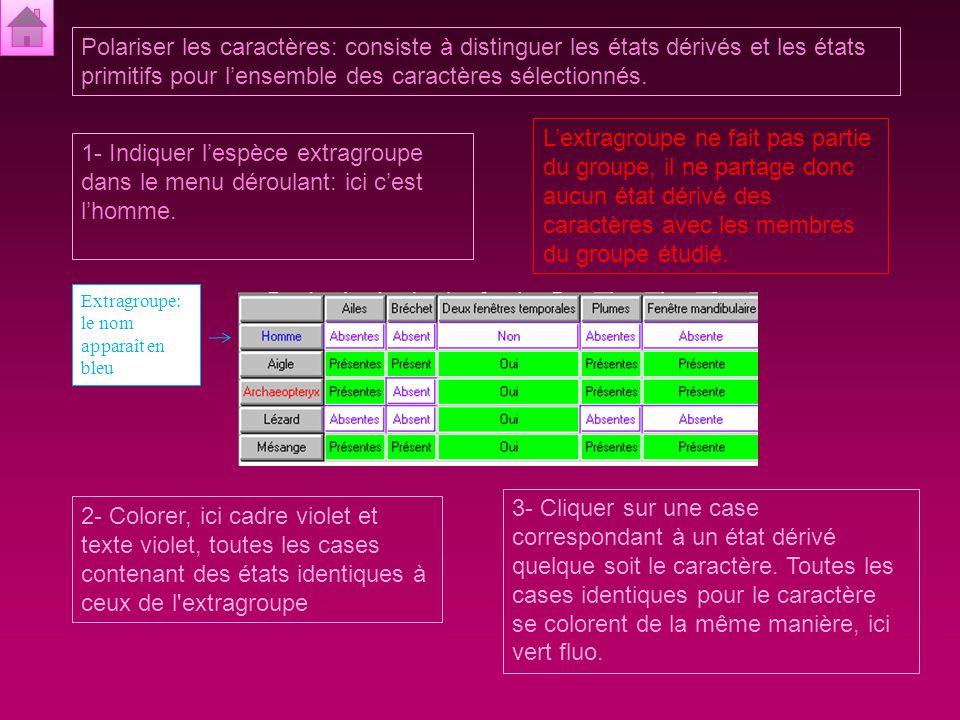Matrice espèces/caractères: tableau à double entrée qui précise l'état du caractère pour chaque espèce du groupe d'étude.