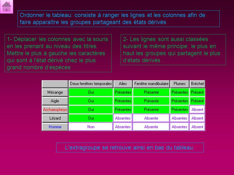 Polariser les caractères: consiste à distinguer les états dérivés et les états primitifs pour l'ensemble des caractères sélectionnés.