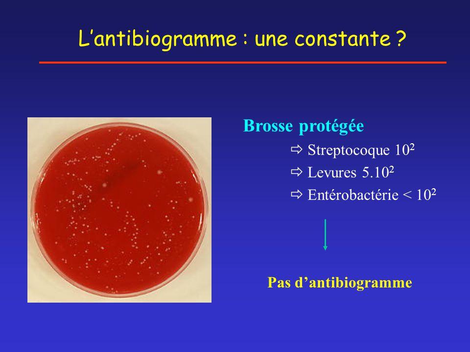 Brosse protégée  Streptocoque 10 2  Levures 5.10 2  Entérobactérie < 10 2 Pas d'antibiogramme L'antibiogramme : une constante ?