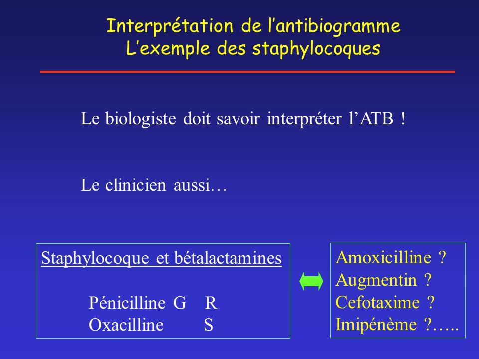 Interprétation de l'antibiogramme L'exemple des staphylocoques Le biologiste doit savoir interpréter l'ATB ! Le clinicien aussi… Staphylocoque et béta