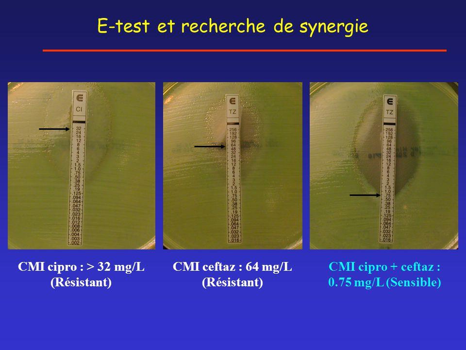 E-test et recherche de synergie CMI cipro + ceftaz : 0.75 mg/L (Sensible) CMI cipro : > 32 mg/L (Résistant) CMI ceftaz : 64 mg/L (Résistant)