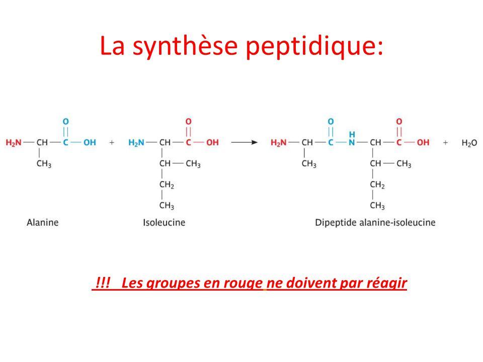 La synthèse peptidique: !!! Les groupes en rouge ne doivent par réagir