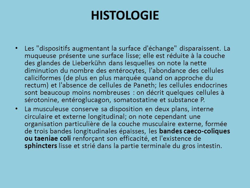 HISTOLOGIE Les