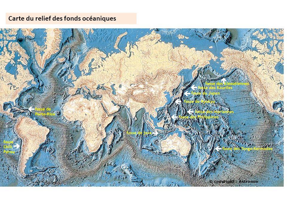 Carte du relief des fonds océaniques