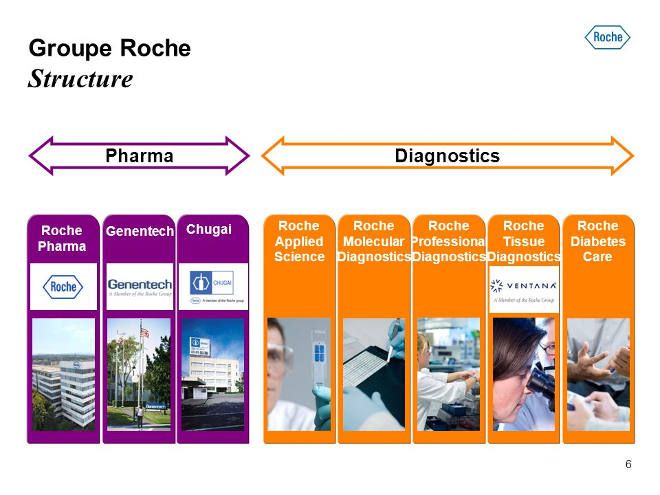 PharmaDiagnostics Groupe Roche Structure Chugai Genentech Roche Diabetes Care Roche Applied Science Roche Professional Diagnostics Roche Molecular Dia