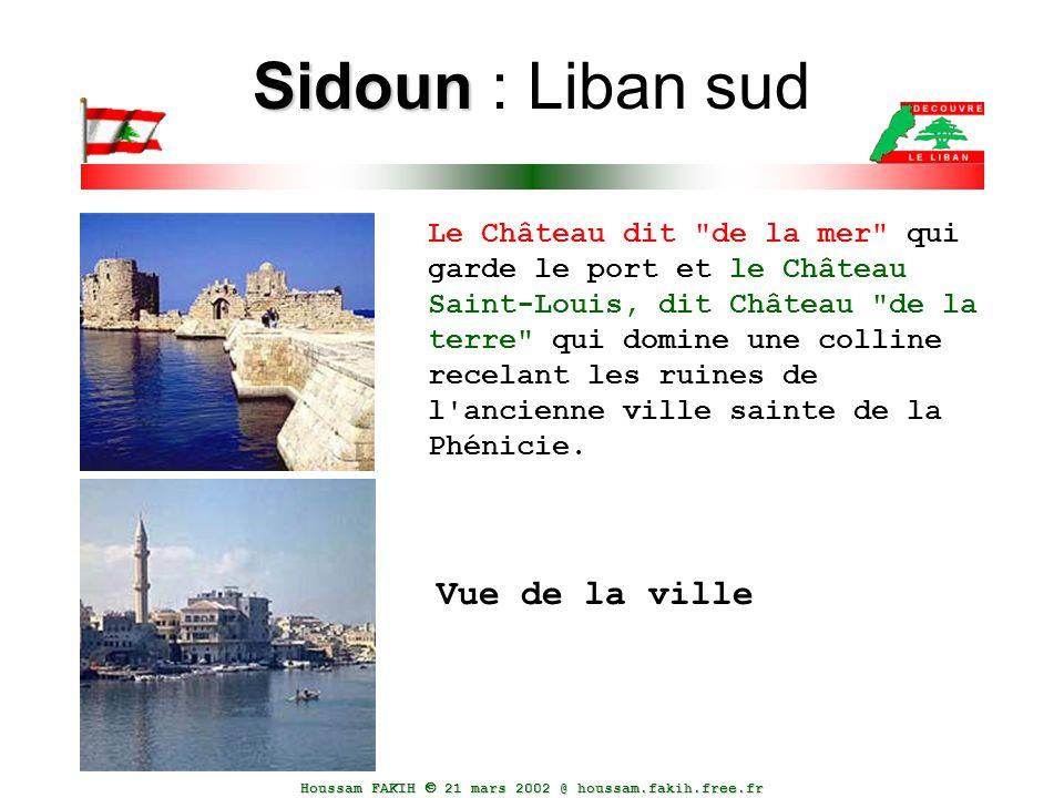 Houssam FAKIH  21 mars 2002 @ houssam.fakih.free.fr Sidoun Sidoun : Liban sud Le Château dit