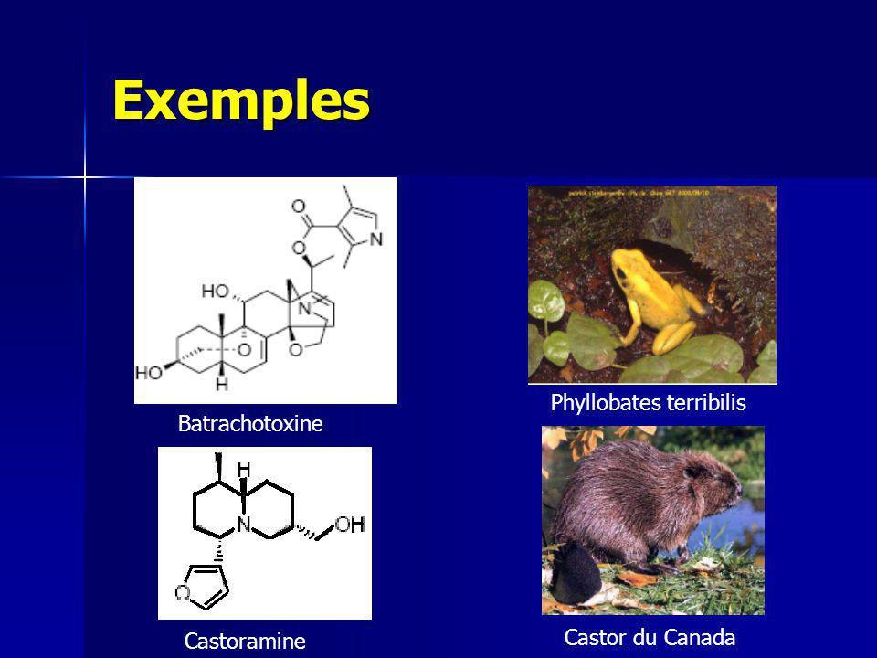 Exemples Tetrodotoxine Pyrrolizidine Fugu Fourmi