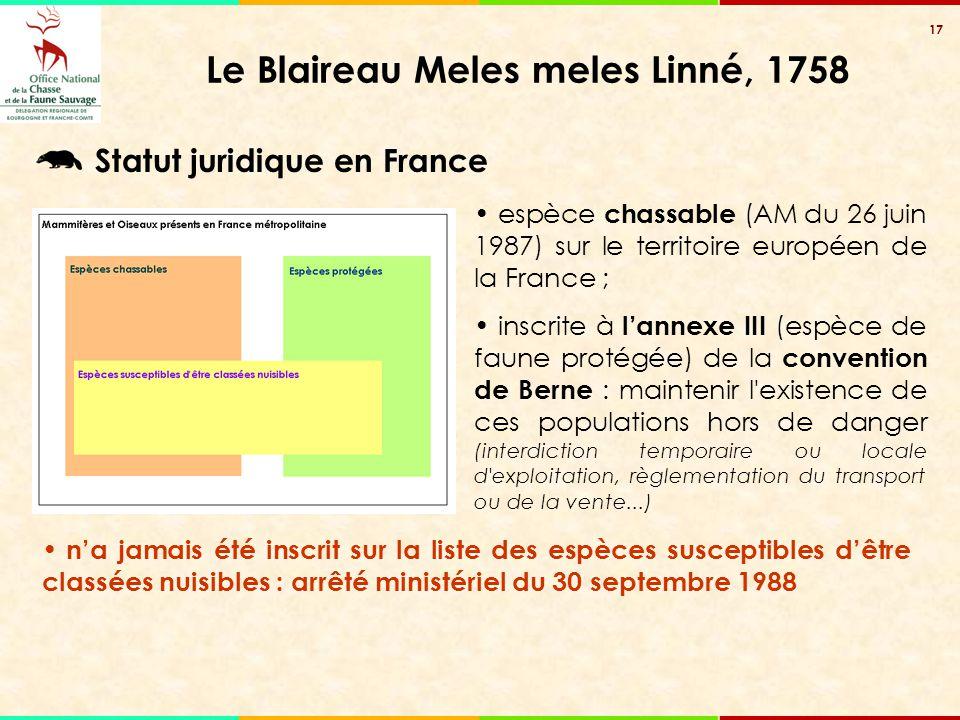 17 Le Blaireau Meles meles Linné, 1758 espèce chassable (AM du 26 juin 1987) sur le territoire européen de la France ; inscrite à l'annexe III (espèce