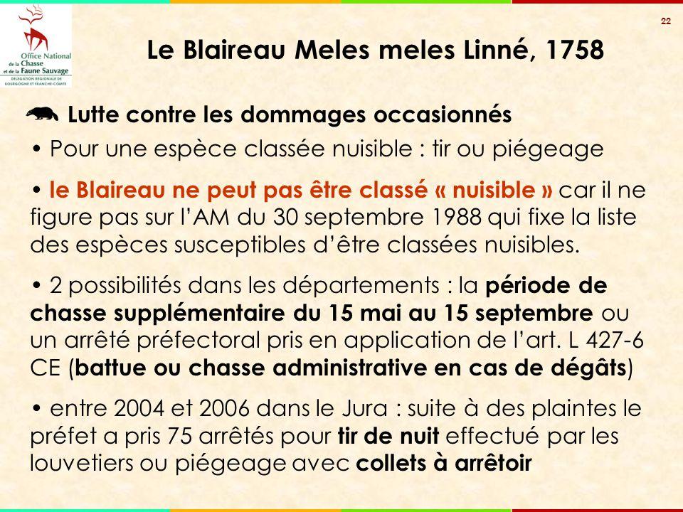 22 Le Blaireau Meles meles Linné, 1758 Lutte contre les dommages occasionnés Pour une espèce classée nuisible : tir ou piégeage le Blaireau ne peut pa
