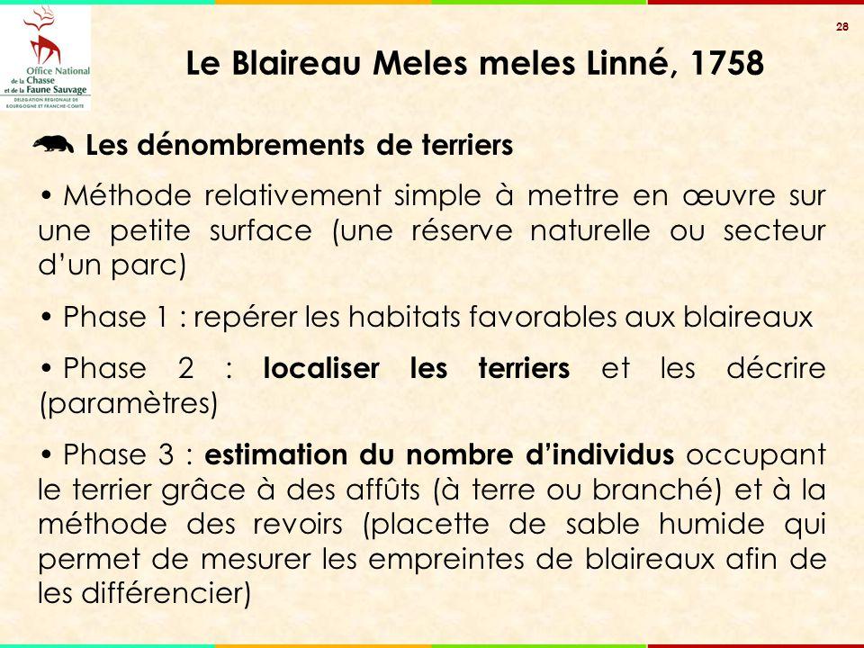 28 Le Blaireau Meles meles Linné, 1758 Les dénombrements de terriers Méthode relativement simple à mettre en œuvre sur une petite surface (une réserve