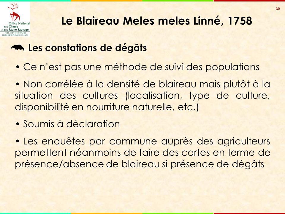 32 Le Blaireau Meles meles Linné, 1758 Les constations de dégâts Ce n'est pas une méthode de suivi des populations Non corrélée à la densité de blaire
