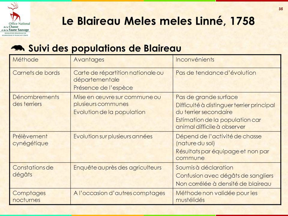 35 Le Blaireau Meles meles Linné, 1758 Suivi des populations de Blaireau MéthodeAvantagesInconvénients Carnets de bordsCarte de répartition nationale