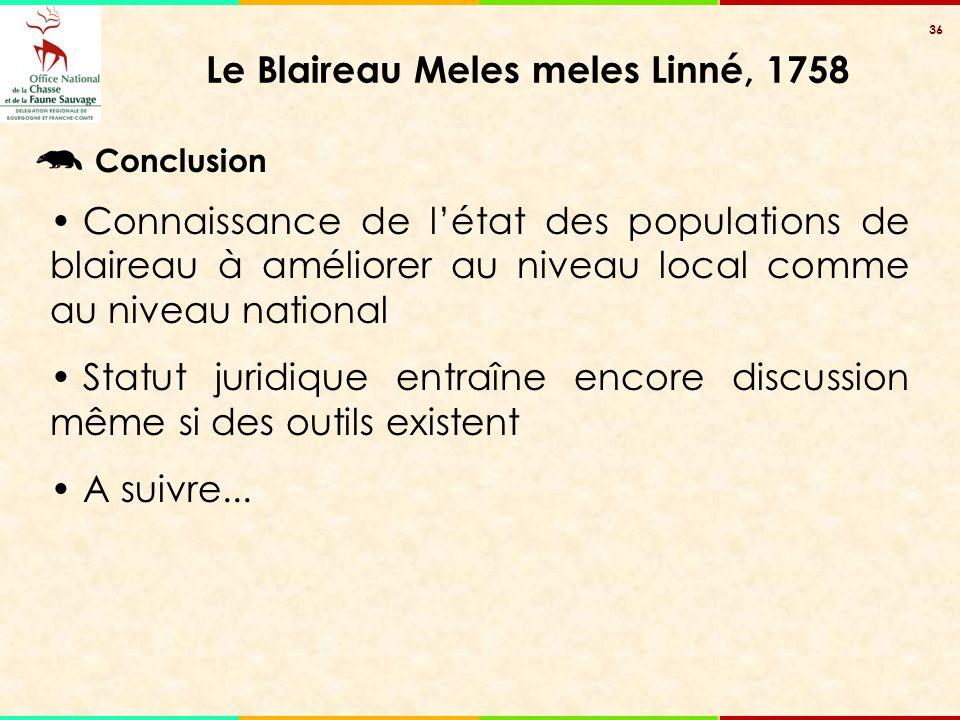 36 Le Blaireau Meles meles Linné, 1758 Conclusion Connaissance de l'état des populations de blaireau à améliorer au niveau local comme au niveau natio