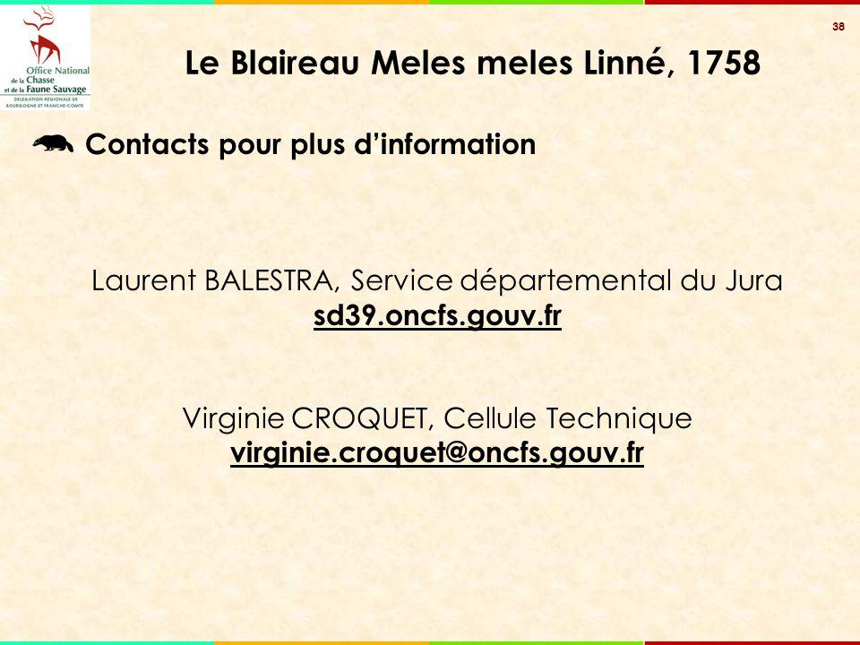 38 Le Blaireau Meles meles Linné, 1758 Contacts pour plus d'information Laurent BALESTRA, Service départemental du Jura sd39.oncfs.gouv.fr Virginie CR