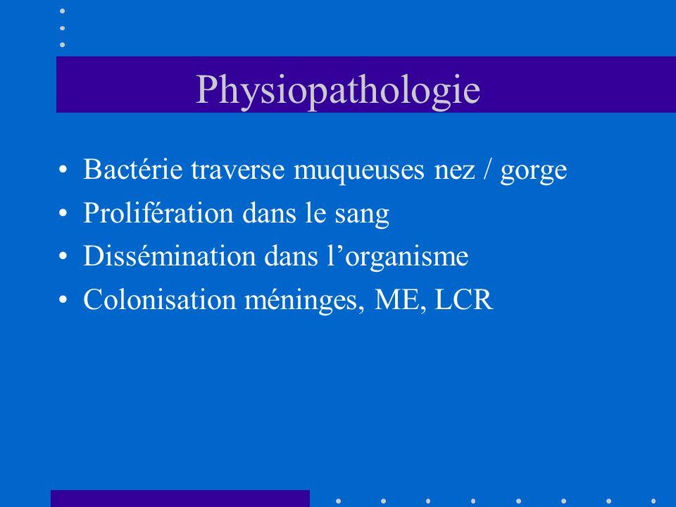 Physiopathologie Bactérie traverse muqueuses nez / gorge Prolifération dans le sang Dissémination dans l'organisme Colonisation méninges, ME, LCR