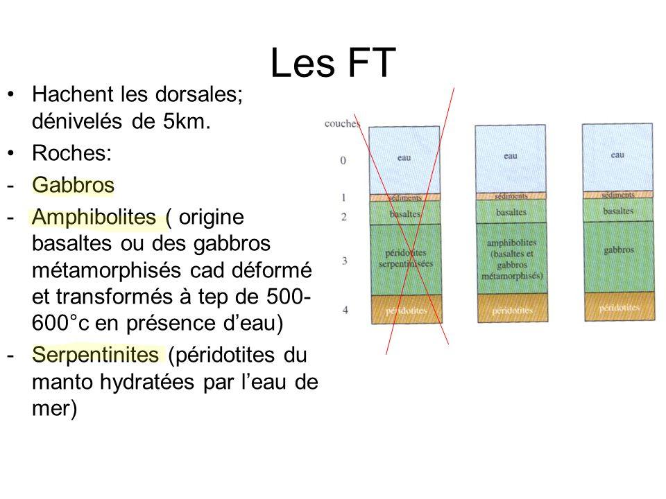 Les FT Hachent les dorsales; dénivelés de 5km. Roches: -Gabbros -Amphibolites ( origine basaltes ou des gabbros métamorphisés cad déformés et transfor
