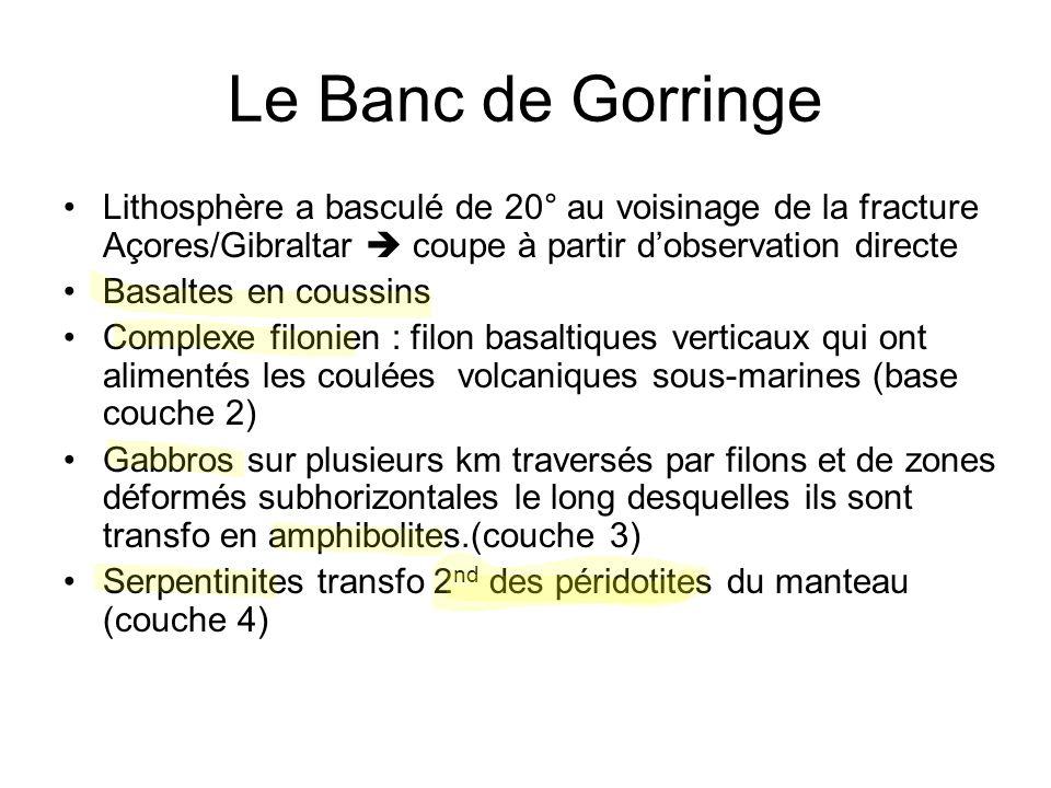Le Banc de Gorringe Lithosphère a basculé de 20° au voisinage de la fracture Açores/Gibraltar  coupe à partir d'observation directe Basaltes en couss
