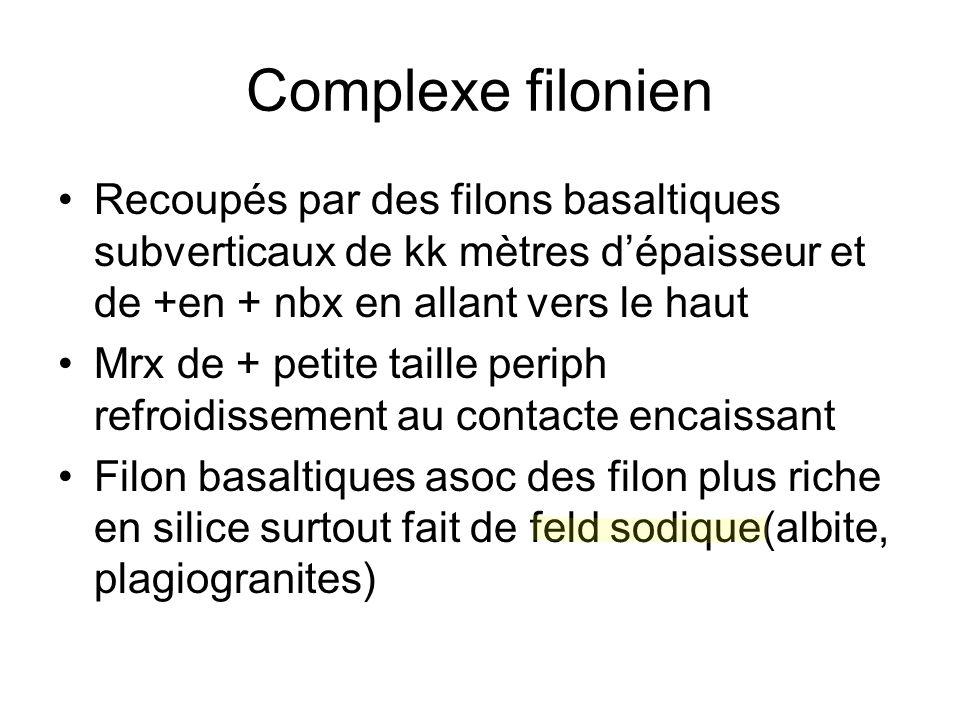 Complexe filonien Recoupés par des filons basaltiques subverticaux de kk mètres d'épaisseur et de +en + nbx en allant vers le haut Mrx de + petite tai